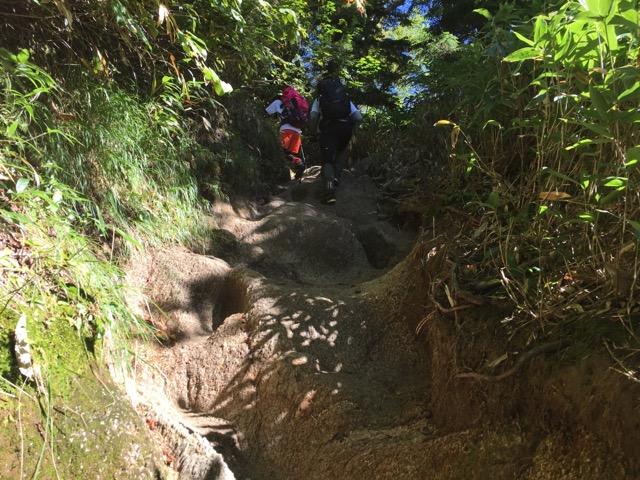 登山道の一部。すべてこんな急な傾斜ではないですよ!