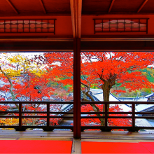 京都・柳谷観音で紅葉イベントを11月11日から ~柳谷観音 紅葉ウイーク&柳谷アートフェア2017~開催サムネイル