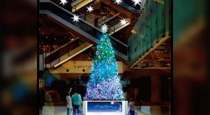 開業5周年を迎えたMARK IS みなとみらいで 心温まるクリスマスを過ごそう! Brilliant Blue★Christmas ~ひかりと心でつなぐMARK IS Happiness~サムネイル