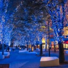 横浜が約50万球の灯りで光のまちへ 市内最大級 全長1.5kmの街全体で楽しめるイルミネーション 『 ヨコハマミライト ~みらいを照らす、光のまち~ 』サムネイル