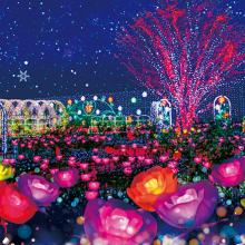 冬の栃木県は夜が熱い!「日本夜景遺産」認定スポットが目白押し!サムネイル