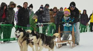 日本最北稚内で犬たちの甲子園開催!!第36回全国犬ぞり稚内大会を2月23日(土)~24日(日)に開催サムネイル