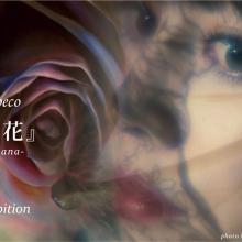 チョークアーティストMoeco 個展『秘花』-HIBANA-  MDP GALLERYにて6月21日(金)より開催サムネイル