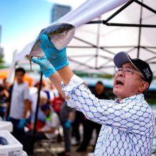 お魚好き集まれ!「見て、体験して、味わえる、食育パーク!」第37回「ざこばの朝市」&「世界のサケ&サバ博」を9月22日開催サムネイル