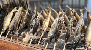「パプリカ」で話題のFoorin楽団も登場  代々木公園で全国のふるさとの「食」が楽しめるイベント 「ふるさとの食 にっぽんの食」開催決定!!サムネイル