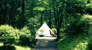 長野県のキャンプ場で「新しい生活様式」に対応した取り組み 「ドライブスルーチェックイン」などを導入した運営を開始サムネイル