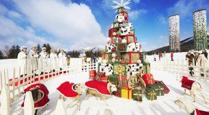 リゾナーレ ワイン、花火、ビーチなど個性豊かなクリスマスイベント「星野リゾート リゾナーレクリスマス2020」開催 期間:2020年12月1日~25日サムネイル