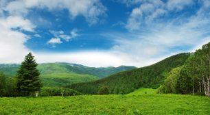 グローブライド、長野県「森林の里親促進事業」のCO2吸収評価認証制度により「森林CO2吸収量認証書」を取得サムネイル