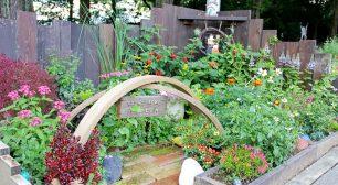 """ぐんまフラワーパークに""""あなただけの小さなお庭""""を作る 「秋の花育ガーデンコンテスト」参加者募集サムネイル"""